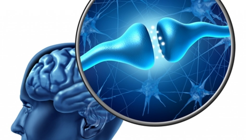Drug abuse alters certain processes in the brain.