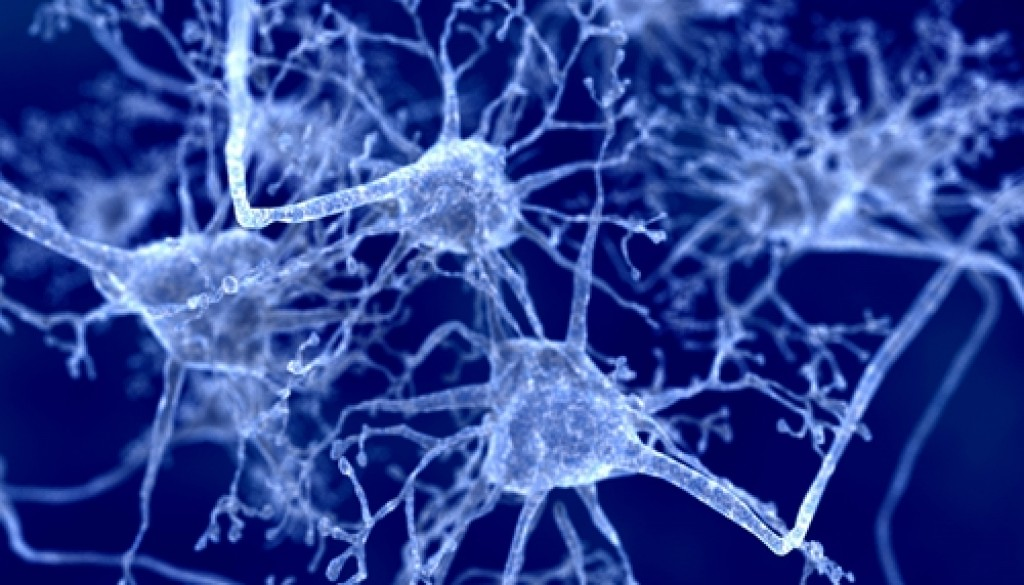 Researchers are exploring ways trauma may influence brain activity.